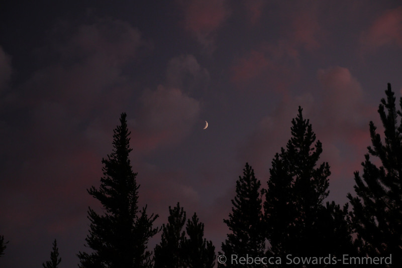 Crescent Moon among the clouds