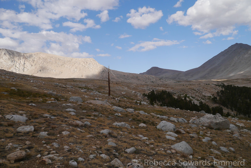 We're descending along Tyndall Creek along the JMT.