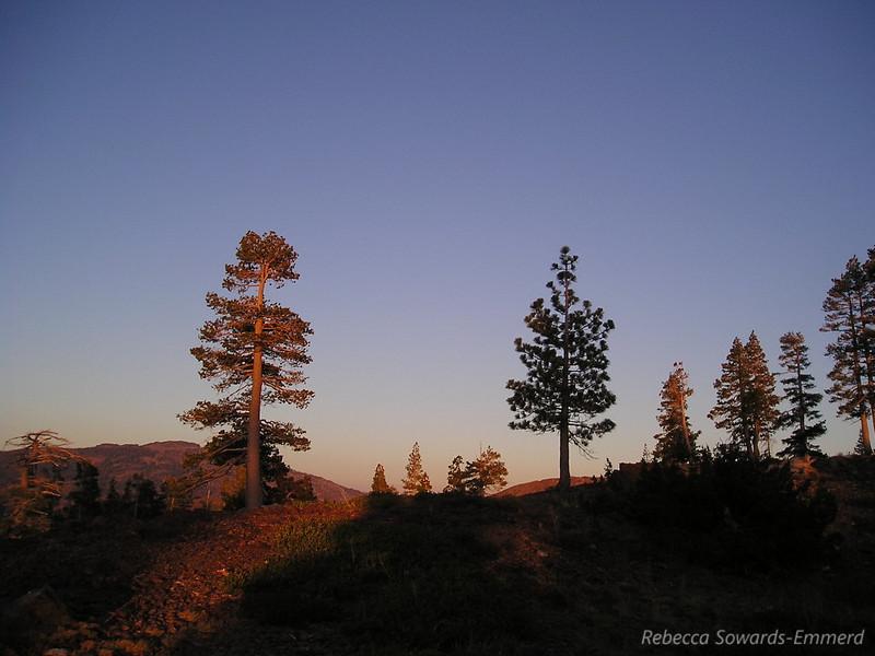 Another stunning Sierra sunset begins.