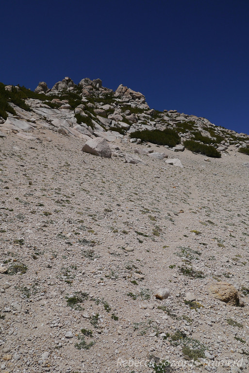 There is a steep and sandy use trail that heads up to the summit rock pile.
