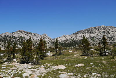 At this point we leave the trail. Ahead is Ragged Peak - the rock outcropping just to the left of the low point.