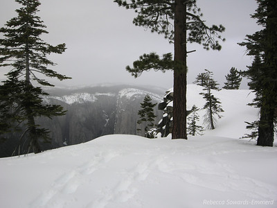 It snowed briefly then began to clear. We took the short walk over to the Rim from camp - El Cap pokes out as the clouds clear.
