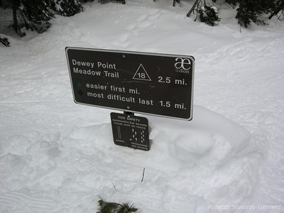 2.5 miles along nice rolling terrain. Really easy on snowshoes
