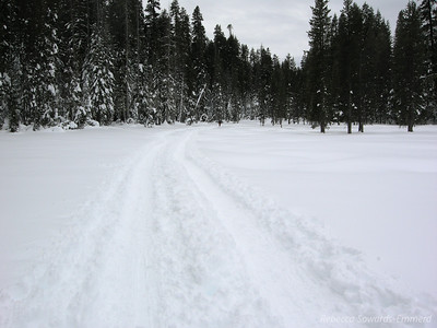 About half a mile in the terrain is still flat and really easy. It's so beautiful out today!