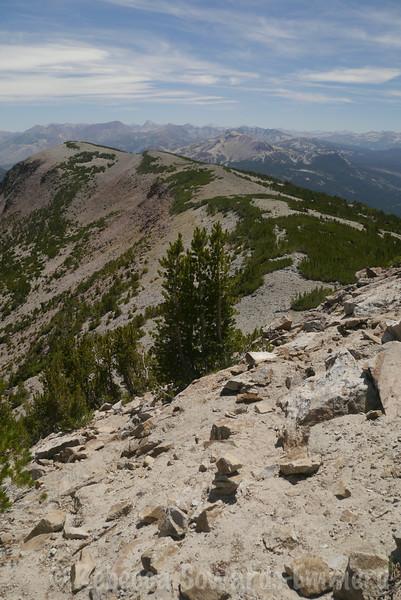 The ridge - mammoth mountain in the intermediate distance.