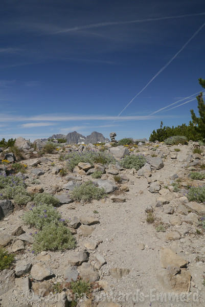 At the high point before the named summits -  found a cairn.