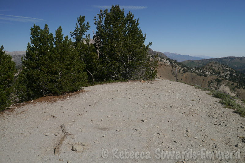 At the end of the road at Dead Man summit. From here, it's single track trail along the ridge.