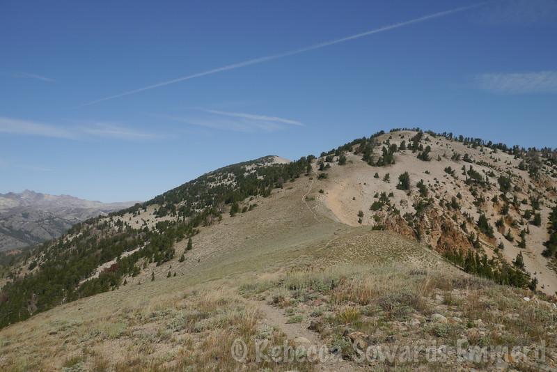 Following the single track up the ridge.