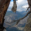 A dead tree on the Smith Peak summit<br /> <br /> (it reminded us of the Ansel Adams Sentinel Dome tree)