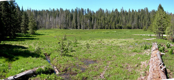 Pan of Smith Meadow