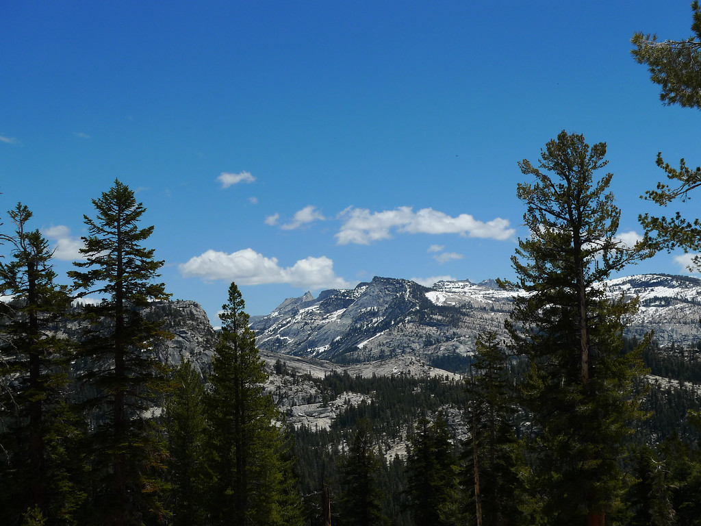 Cathedral, matthes crest.