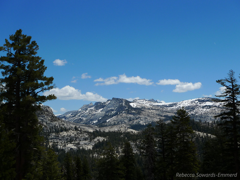 Cathedral, tenaya peak, matthes crest, etc.
