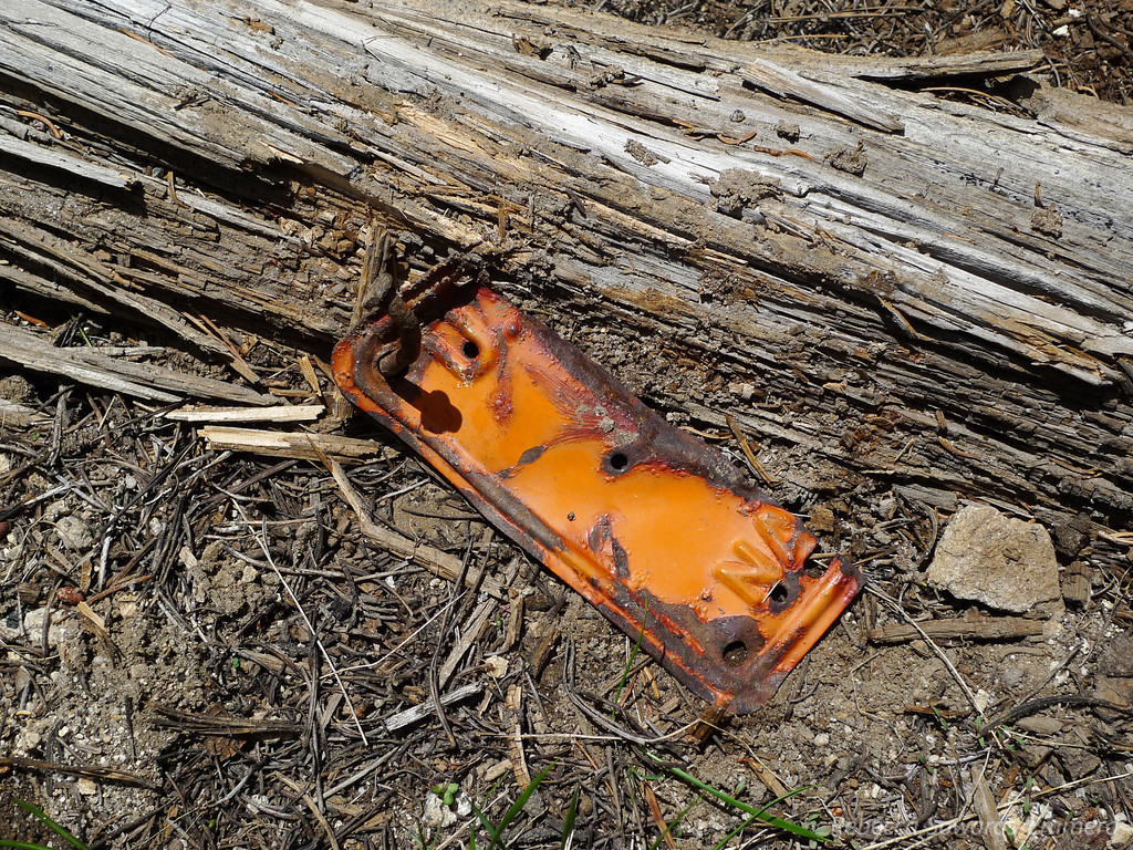 A piece of one of the license plate markers nailed into a fallen tree. This tree has been down a loooong time - so it appears that these markers are pretty old.