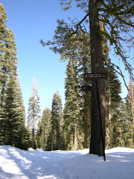 Trail sign - there's still room for a few more feet of snow here.