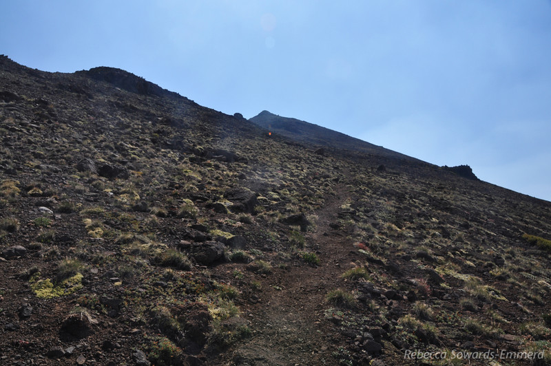 Looking up to the summit