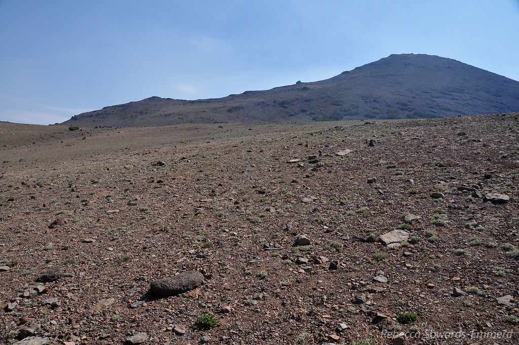 Sonora Peak. We'll gain the ridge to the left and follow it up. We'll also quickly learn that it's steeper than it looks from down here, but it's still a class 1 walkup all the way.