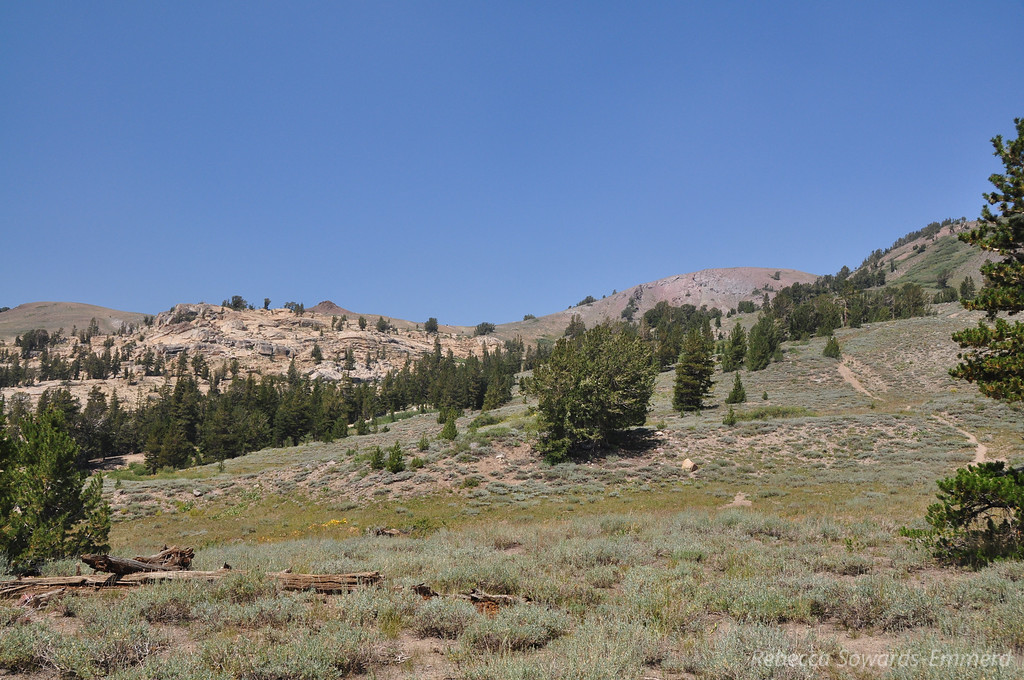 Almost back to the trailhead - looking back towards the pass