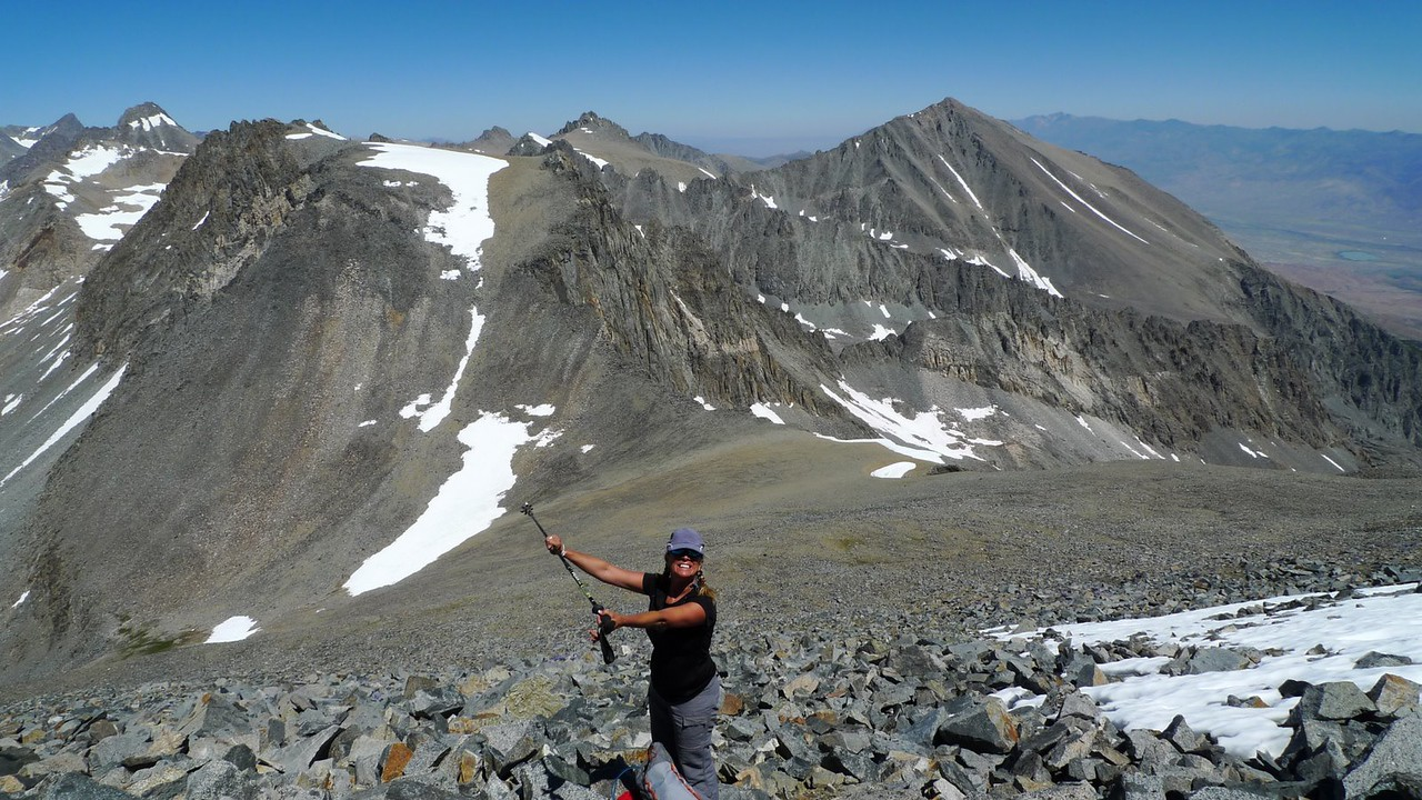 Mt Prater, Mt Bolton Brown, and part of the Palisade crest (among others)
