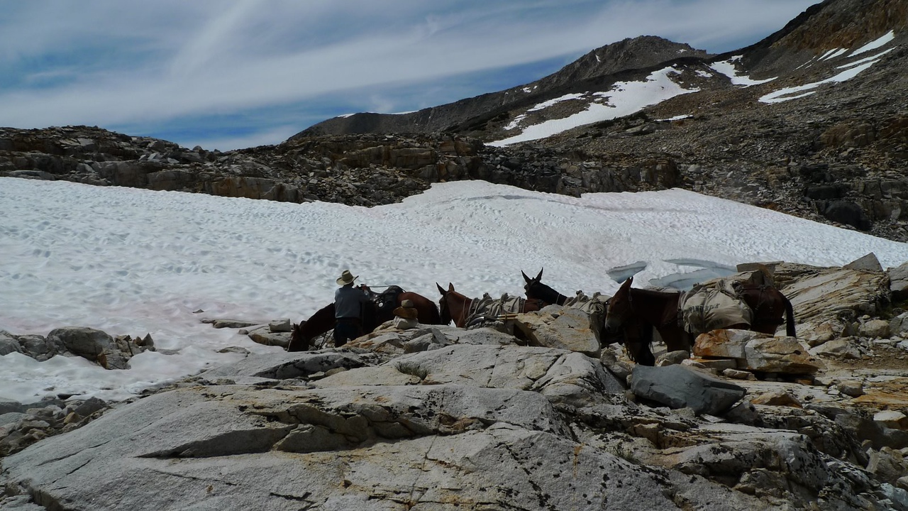 Ran into some packers just below the pass. The poor horses and mules did not seem happy about the snow.