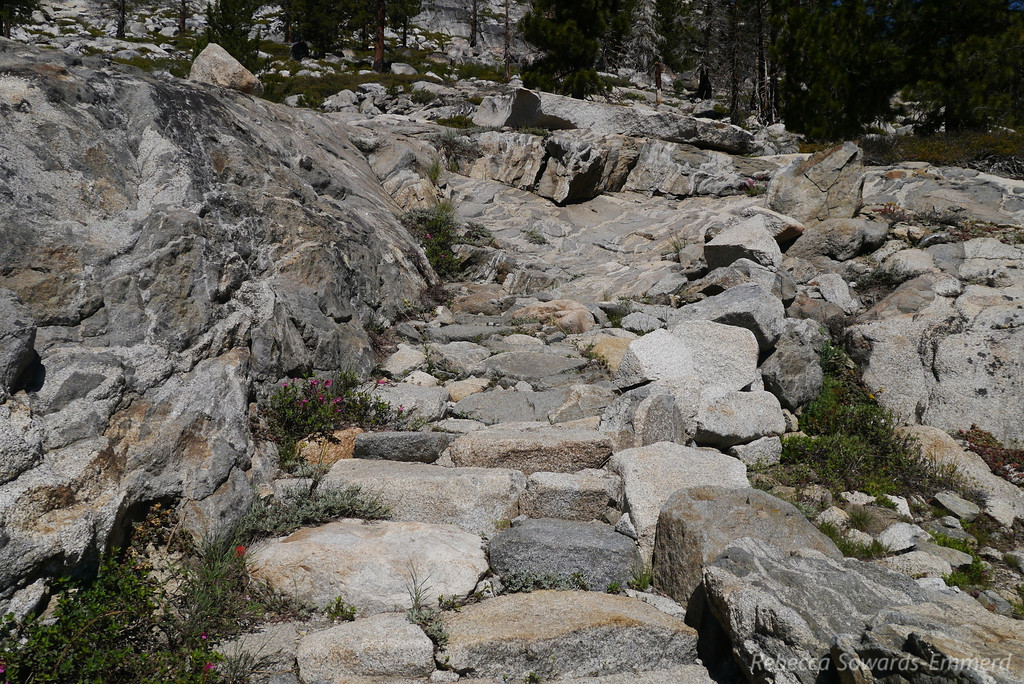 The trail initially climbs along Yosemite creek and through some beautiful rock work.