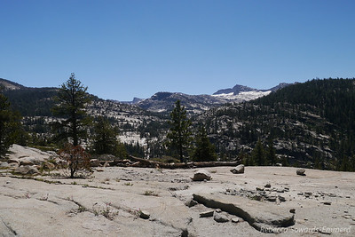 And the view towards Mt Hoffman.
