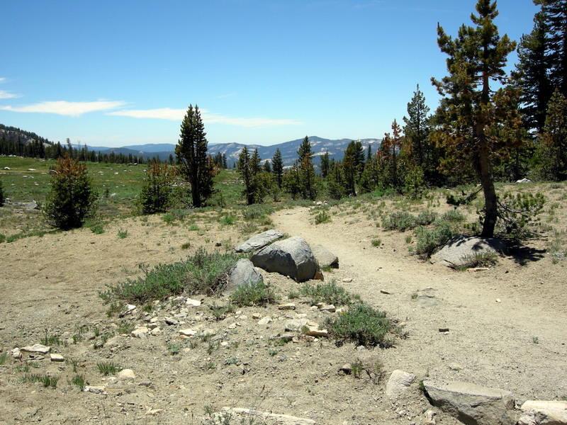 Trail to Ten Lakes Pass