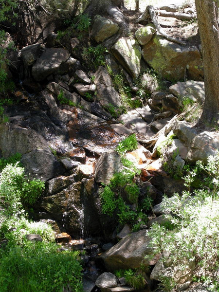 This creek paralleled the steep trail to Ten Lakes Pass.