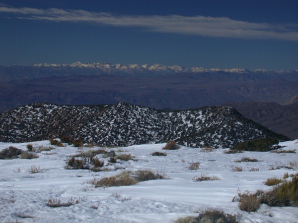 View of the Sierra from the top of Wildrose peak