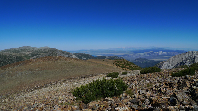 View towards Mono Lake