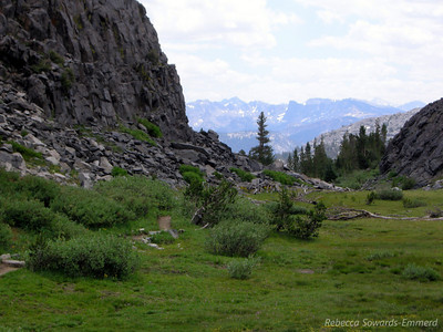 Heading through a flowery subalpine meadow on the way to Shadow Creek. Sierra peaks on the horizon.