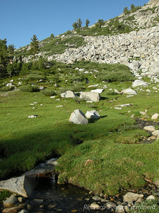 Our camp was in this beautiful subalpine meadow area. Ever since I passed through in 2007 I've wanted to come back and spend the night here. Just perfect!