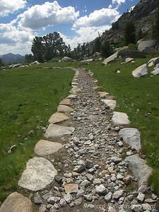 Trail through the meadows