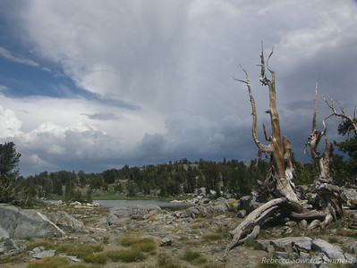 And also in the direction of Mammoth