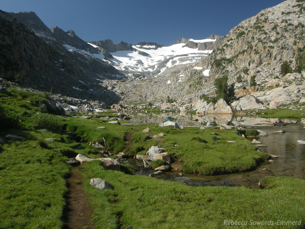 I love these alpine meadows!