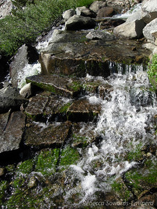 Rushing creek overflow along the trail