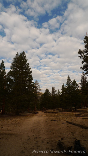 Saturday morning, starting down the trail under interesting skies. I'm heading for trail peak.