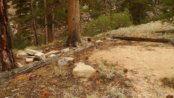 Eventually I found the remains of an old trail and followed in for a short distance until coming across this campsite.