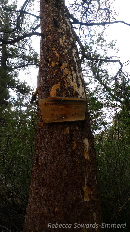 An old Golden Trout Wilderness boundary sign.