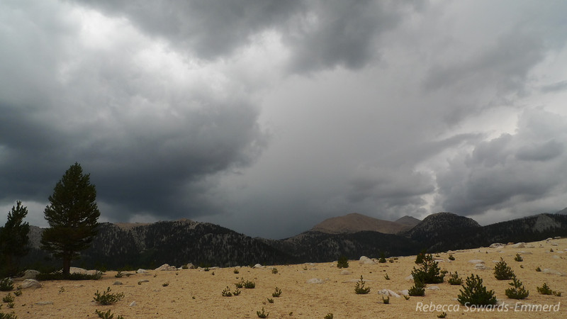 The dark cloud on the left was building over Trail Peak. Trailmaster on the right. Heard some big thunder here and decided to hoof it across the open horseshoe meadow.