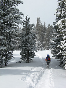 There was beautiful fresh snow to trudge through