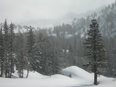 Snowy views from camp