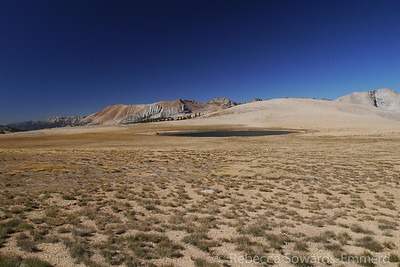There is a small lake up here on the plateau, I'm surprised there is still water in it this dry year.