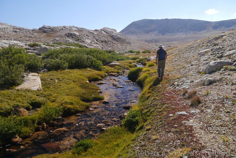 Following another creek back to camp.