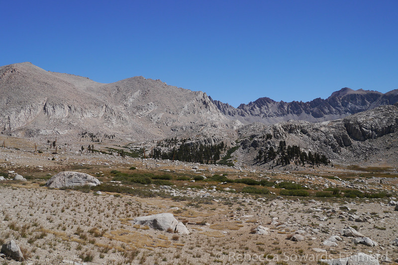 Lower Meadows in Wright Lakes Basin.