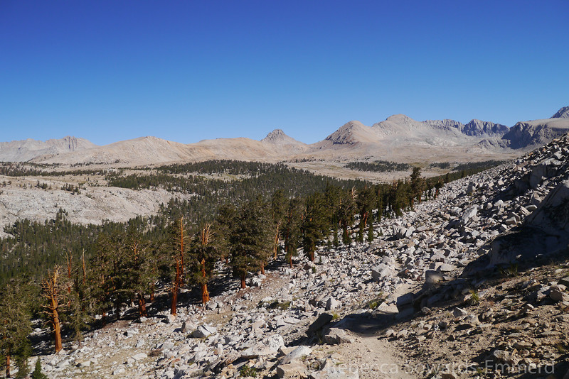 Looking back along the Tyndall creek drainage.