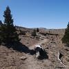 JMT along Bighorn Plateau.