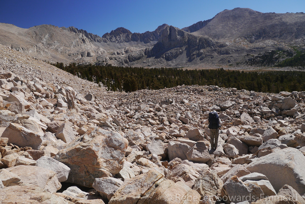 This boulder field wasn't too pleasant, but it wasn't too bad either. At least it was short.