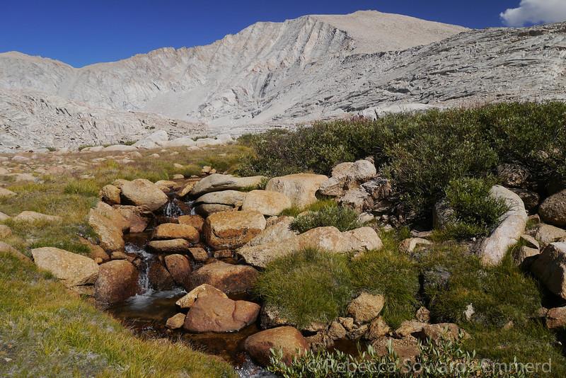 Mt Barnard.