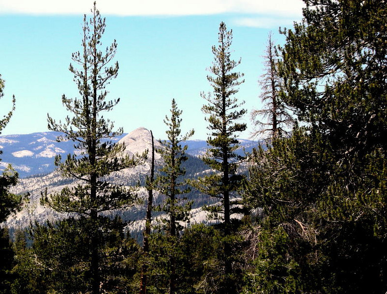 A momentary glimpse of Half Dome along the trail to Ottoway Lakes<br /> <br /> At this point we finally began to emerge from the buggy forest and into the high country