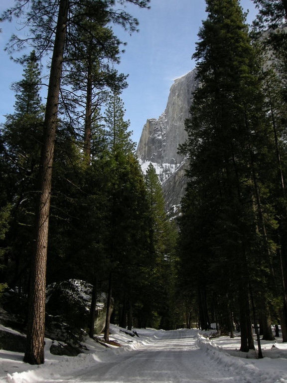 Our first glimpe of Half Dome along the trail